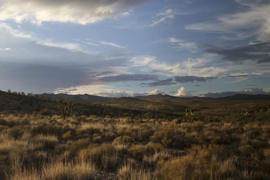Se ubica en los límites de California y Nevada