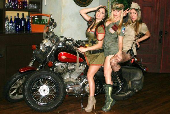La fantasía de muchos perros es montar un motociclo al lado de una belle...