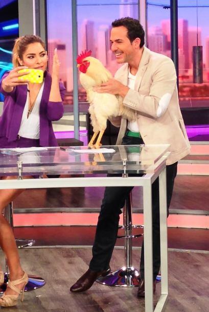 Un día antes, Enrique Santos llegó con todo y un gallo par...