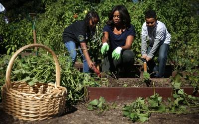 Michelle Obama, feliz en la cosecha otoñal