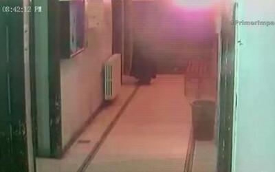 Un misil aéreo estremece un centro médico en Siria