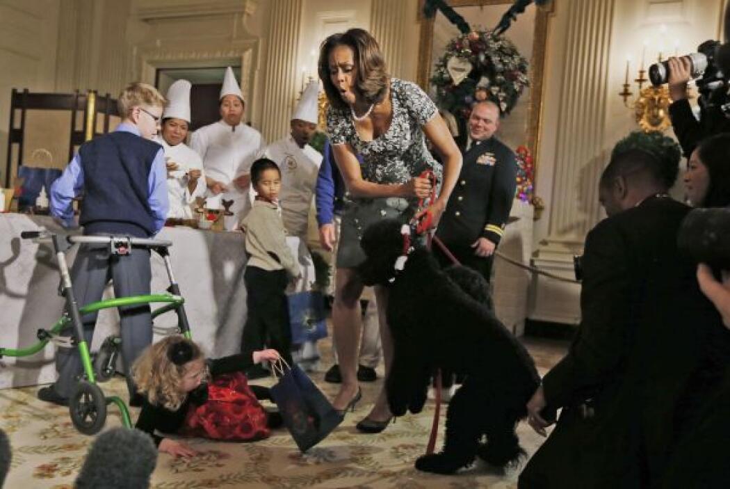 El perro negro con pecho y patas delanteras blancas fue la estrella en o...