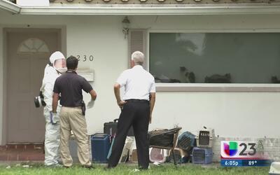 Animales víctimas de negligencia son rescatados al sur de Florida
