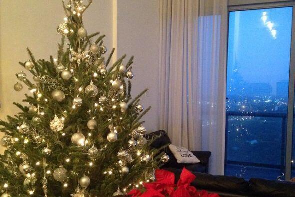 Desde hace varias semanas Ana compartió una foto de su árbolito decorado...