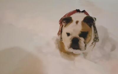 El videíto: atrapar una bola de nieve no debería ser tan difícil