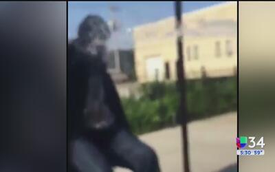 Individuos aterrorizan vecindario las calles de Chicago usando pistolas...