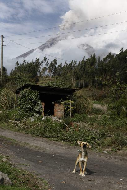 Ahora, el riesgo de erupción está latente por lo que las autoridades ya...