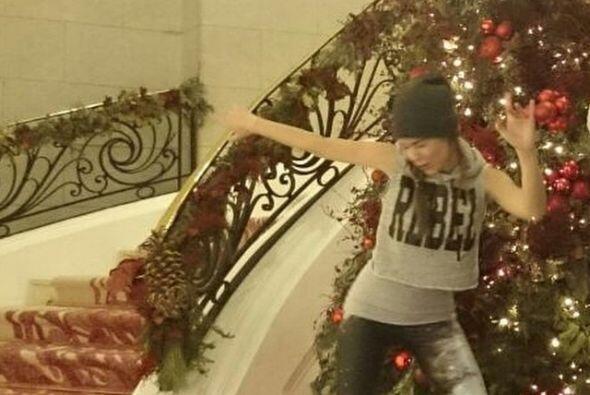 Camila Sodi comienza su día navideño en su árbol y...