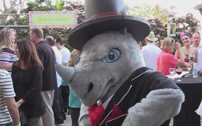 Con un toque cubano, el zoológico de Miami inauguró un centro único de a...