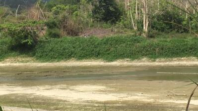 Hace dos años la Isla enfrenta una fuerte sequía