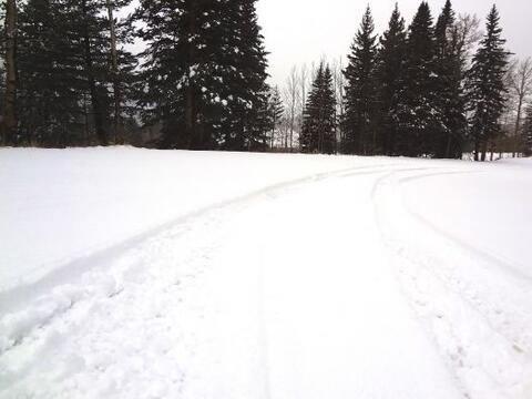 Para los amantes de lo extremo está Snowbowl Arizona, en el pico...