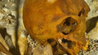 """El esqueleto de Naia, el """"más completo y genéticamente intacto"""" hallado..."""