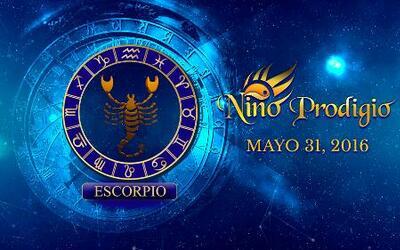 Niño Prodigio - Escorpión 31 de mayo, 2016