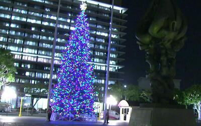 Con encendido de árbol inició oficialmente la Navidad en Los Ángeles