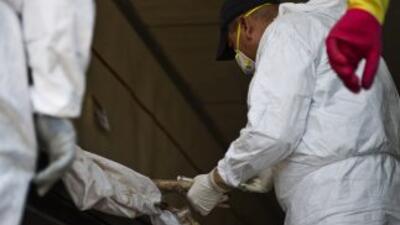 Un informe de la OEA destacó que América es la región más violenta del m...