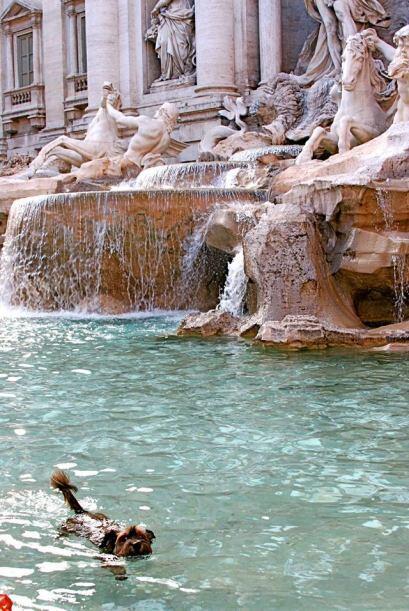 Ni la Fontana de Trevi en Roma, se escapo de que Oscar se echara un pequ...