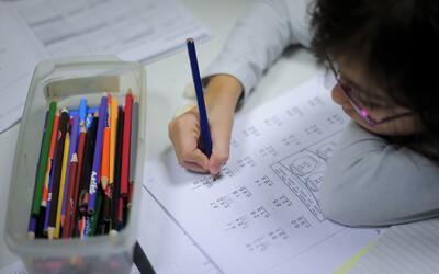 Un estudio demostró que hay un factor hereditario en el dominio d...
