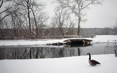 Ya llegó la primavera pero llena de nieve con Jackie Guerrido