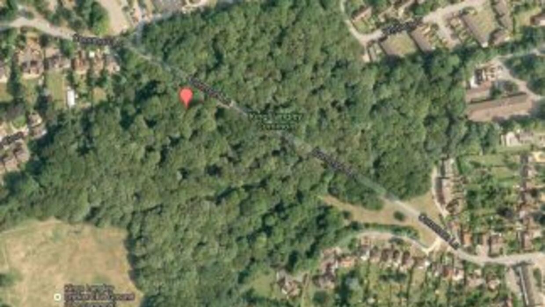 La localidad inglesa de Kings Langley será rebautizada durante una seman...