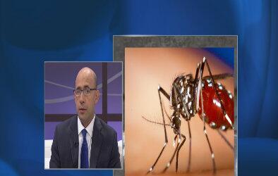 El virus del chikungunya en dólares y centavos