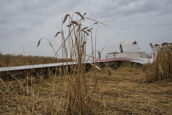 A lo largo de varias millas quedaron esparcidos los restos del vuelo MH17.