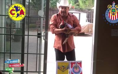 'La gallina vidente' ya sabe quién ganará el clásico entre el América y...
