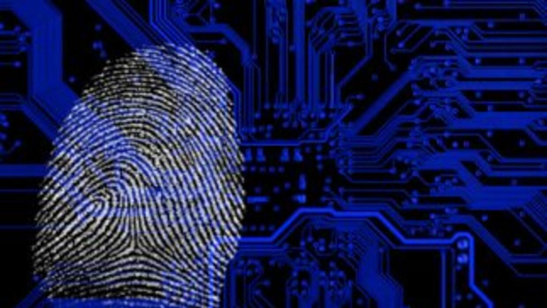Durante el año fiscal 2010 el programa conocido como E-Verify procesó 16...
