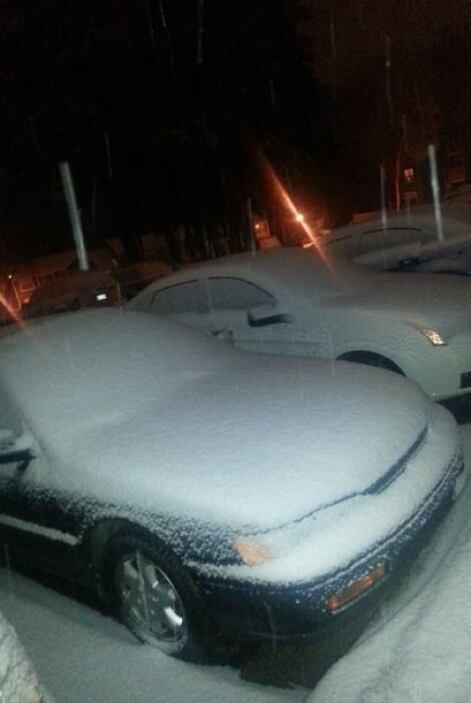 Erika Velázquez fue una testigo más de automóviles cubiertos por la nieve.