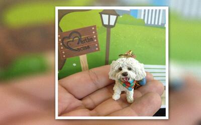 Artista venezolana inmortaliza mascotas en diminutas obras de arte