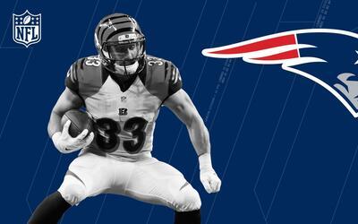 Rex Burkhead, bienvenido a los New England Patriots