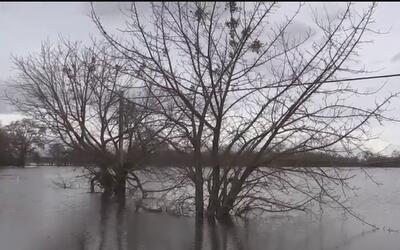 Desbordamiento del río provoca inundaciones en el condado San Joaquin
