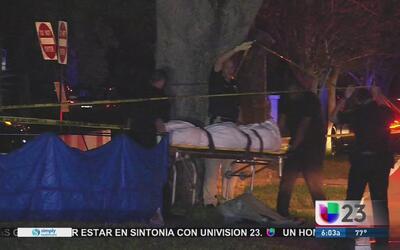 Presunto ladrón cae abatido a tiros en parque de Plantation
