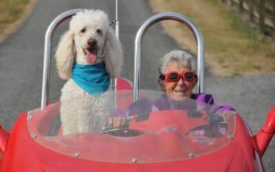 Norma Jean Bauerschmidt compartió con su perro Ringo el viaje por...