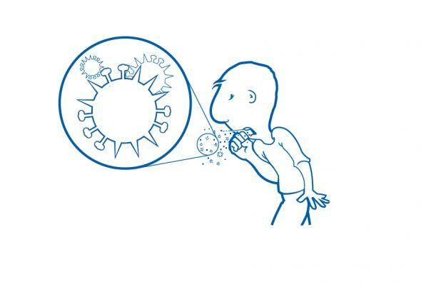 ¿Qué es la influenza?  La influenza es una enfermedad causada por los vi...