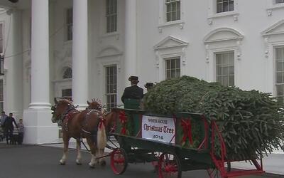 Michelle Obama recibió el árbol de 19 pies que adornará la Casa Blanca e...