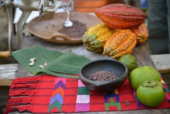 Perú cuenta con el  60% de las variedades de cacao existentes en el mundo.