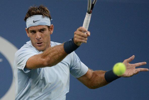 Juan Martín del Potro: De nacionalidad argentina es un tenista profesion...