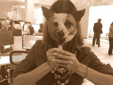 Esta es la mascota de este talento de Noticias Univision. ¿Lo rec...