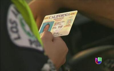 Gobernador de California aprobaría licencias a indocumentados