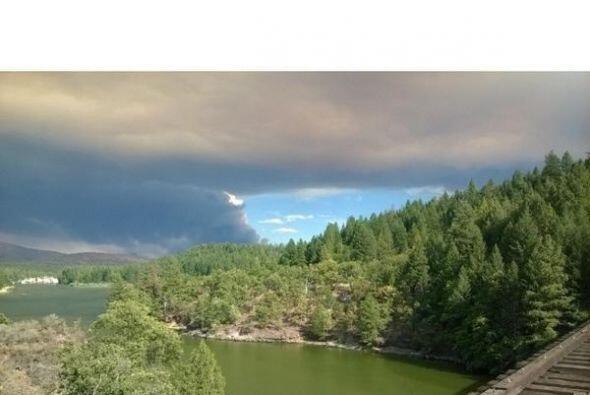 Mientras al norte del estado al menos 14 incendios forestales han dejado...