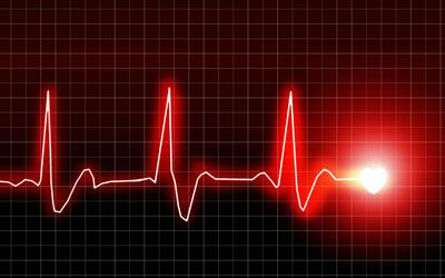 ¿Cuáles son las principales causas de muerte en EEUU?