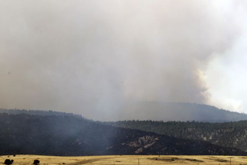 El enorme incendio forestal que arrasa el oriente de Arizona y obligó ya...