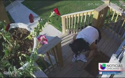 Alertan de robos de paquetes en Portage Park