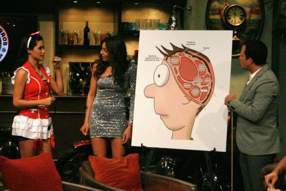 Comprobaron que la mayor parte de su cerebro la utilizan para pensar en...