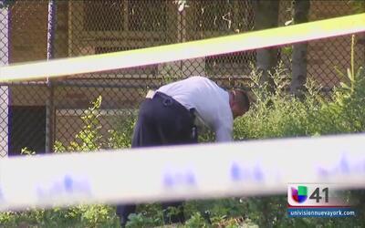 Hallan a dos mujeres muertas en parques de Brooklyn