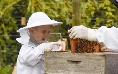 Él es  el apicultor más pequeño del mundo