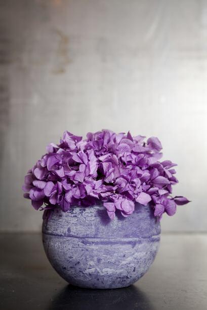 Color profundo. Para celebrar la llegada de la primavera y la vuelta del...