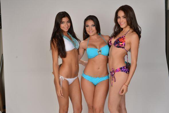 Ellas son las bellezas que participarán para ser la nueva Miss Verano.