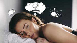 Pelo lead bueno dormir.jpg