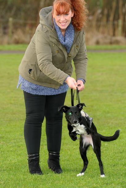 Nikki Dick, de 50 años, y su esposo Ian ayudan a Rescue for Dogs...